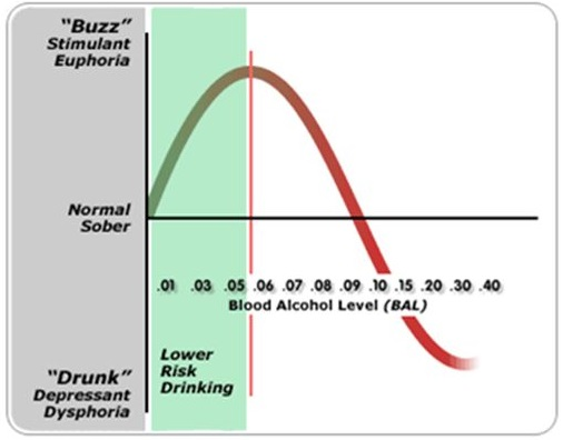 The Biphasic Effect of Alcohol