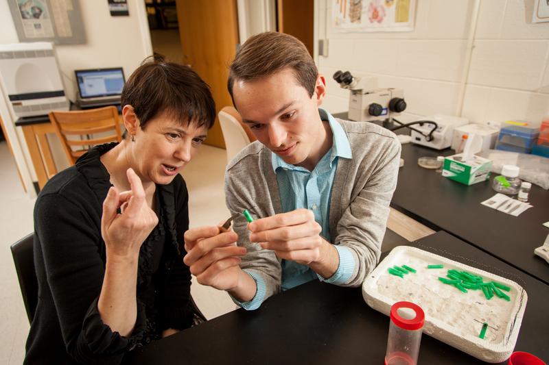 Biology Professor Susan Fahrbach, Neuroscience Lab in Winston Hall, David Hale ('15)