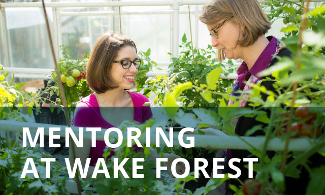 Mentoring at Wake Forest, OPCD
