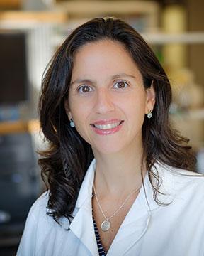 Dr. Dos Santos