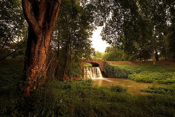 Reynolda Gardens, photo by Travis Dove ('04)